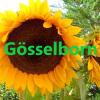 Gösselborn - mein neues Zuhause